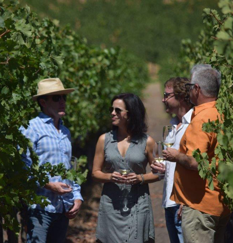 Beyond the bottle experience, Leading Wineries of Napa exclusive tasting experience