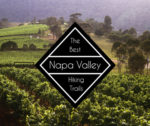 The 5 Best Hiking Trails Near Napa Valley