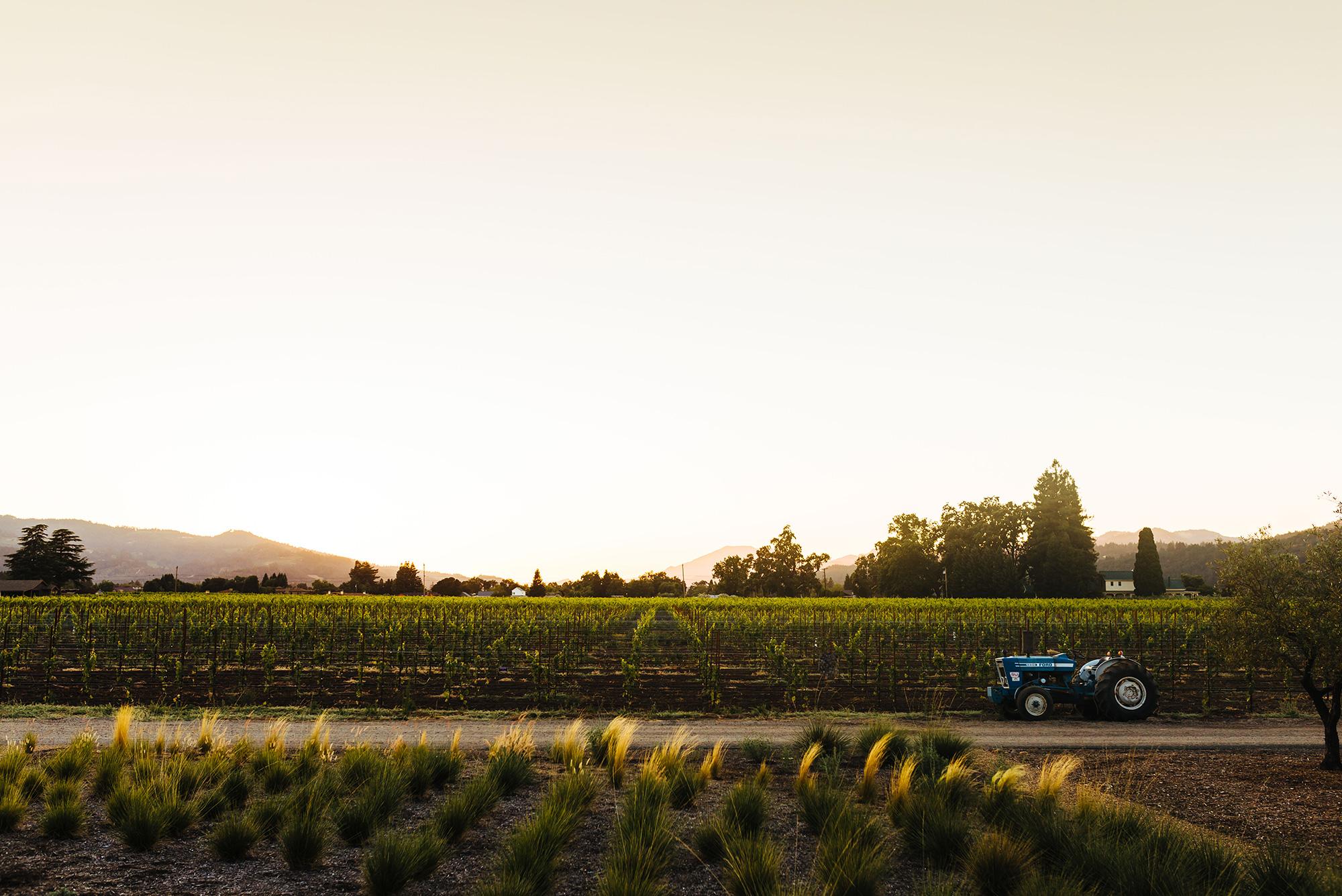 Wheeler Farms Leading Wineries of Napa